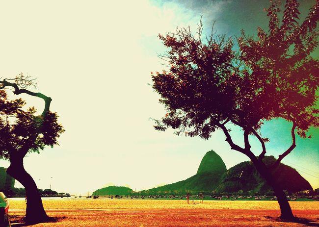 The Great Outdoors - 2016 EyeEm Awards Rio De Janeiro Sugarloaf