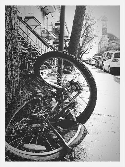 Twistbike