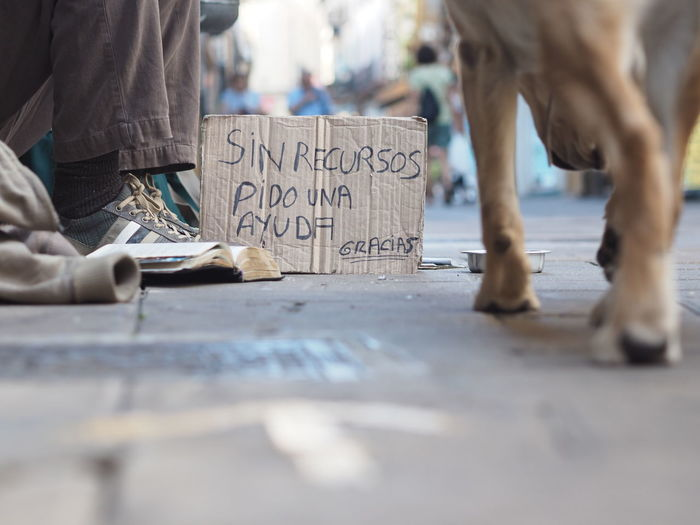 Low section of beggar with text on cardboard by dog at footpath