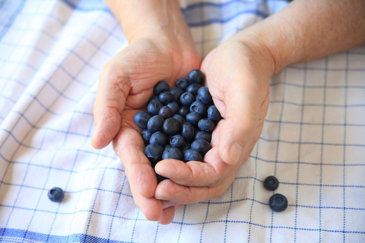 Man with blueberries over dish towel Blue Blueberries Close-up Cloth Day Dish Towel Fabric Fingers Food Fresh Fruit Grid Pattern Hands Hands Full Healthy Eating Holding Indoors  Many Natural Light One Person Overhead Seasonal