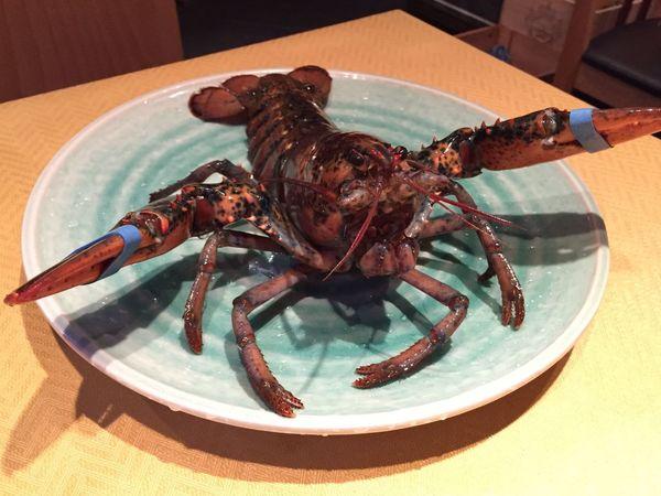 Lobsters Shrimps EBI Homard Spiny Lobster Yammy!!  Delicious Lecker Gutenappetit Dinner Hummer Garnelen Abendessen Gut いただきます