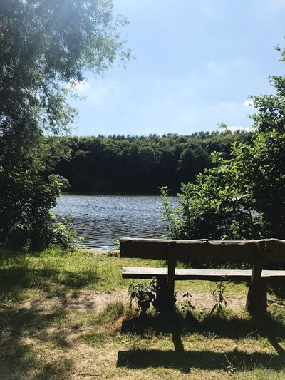 Come and take a seat Newmiller Dam Bench Tree Plant Nature Sky No People Day Tranquility Outdoors Land Fence Beauty In Nature Shadow Seat Sunlight
