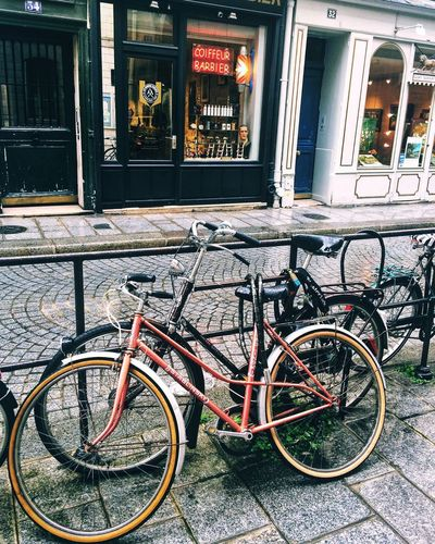 Bicycle Mode Of Transport Transportation Window Land Vehicle Stationary Outdoors Architecture Street Building Exterior Built Structure No People Day City Bicycle Rack Autumn The Week On EyeEm