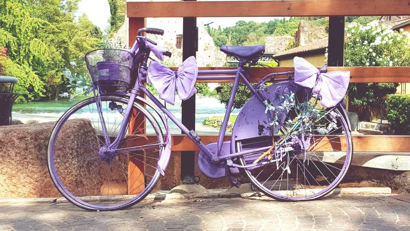 Purple bycicle Outdoors Bycicle Photography Bycicle Art Bycicle Lovers