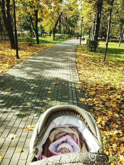 My daughter My Daughter дочь на прогулке