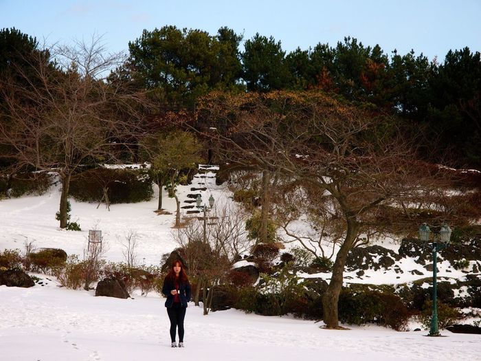 Women traveling alone time.. JEJU ISLAND  Camellia Hill Traveling Winter Landscape Olympus E-P3 Zuiko 14-54mm II From My Point Of View Nature Snow ❄