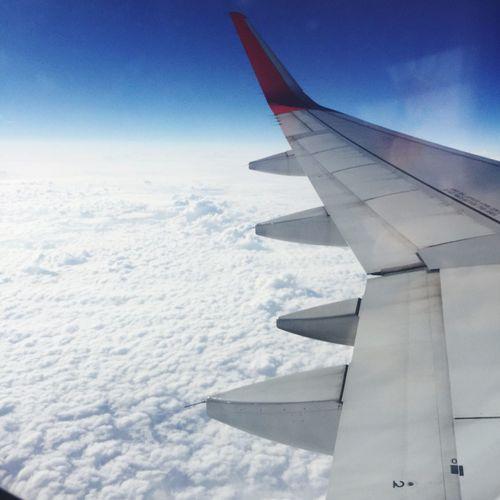 Airplane Sky No People IPhoneography Kikotokyodaily Skyhigh