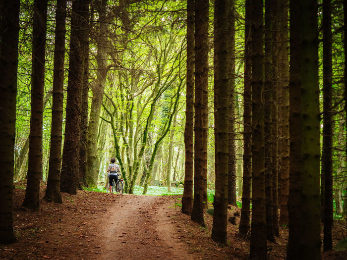 Denmark Lost In The Landscape Adult Adults Only Beauty In Nature Day Forest Full Length Landscape Nature One Man Only One Person Outdoors People Real People Rear View Tree Tree Area Tree Trunk Walking WoodLand