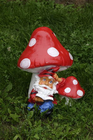 Garden Gnome Gartenzwerg Anthropomorphic Face Childhood Christmas Close-up Clown Day Field Fly Agaric Mushroom Grass Green Color Growth High Angle View Lawn Gnome Mushroom Nature One Person Outdoors People Real People Red