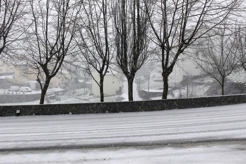 Sabugueiro - February 2016    Citybycity Eye Em Around The World Snow Winter White Sabugueiro Serradaestrela Portugal