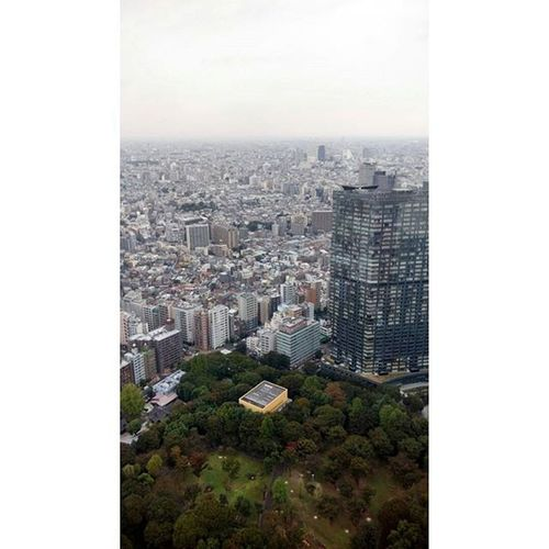 Tokymetropolitanartmuseum Tokyo Japan