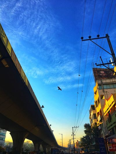 Hyderabad ❤️❤️ Animal Themes Animals In The Wild Flying Low Angle View One Animal Architecture Connection Sky Clear Sky Spread Wings Built Structure