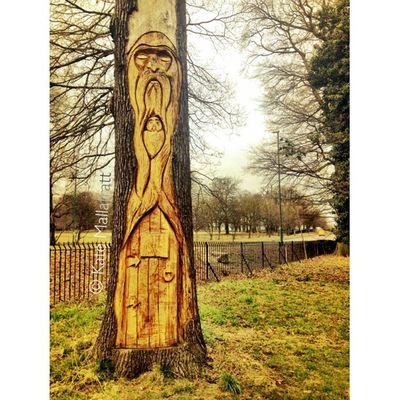🍃🌿Woodland Man 🌿🍃 Squaready Wood Woodlandman WoodLand February Forest Trees Cameraplus Nottinghamshire Nottingham K8marieuk Igers IGDaily Instadaily Instagrammers Igersnottingham Ig_masterpiece Unitedkingdom Timber Magical Mystic Mystical Carving Park