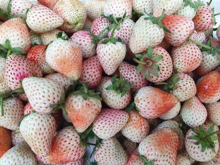 unripe strawberrys Strawberry Backgrounds Full Frame Close-up Food And Drink For Sale Shop Market Farmer Market