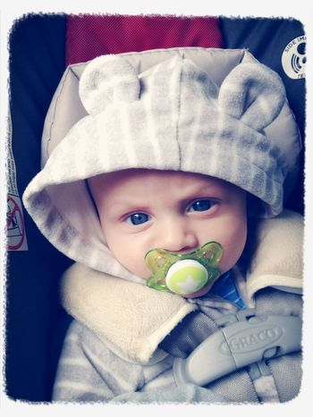 My Little Luvs