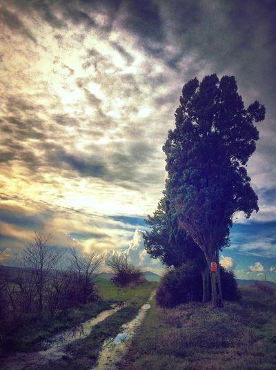 AMPt_community EyeEm Best Shots - Landscape NEM Clouds
