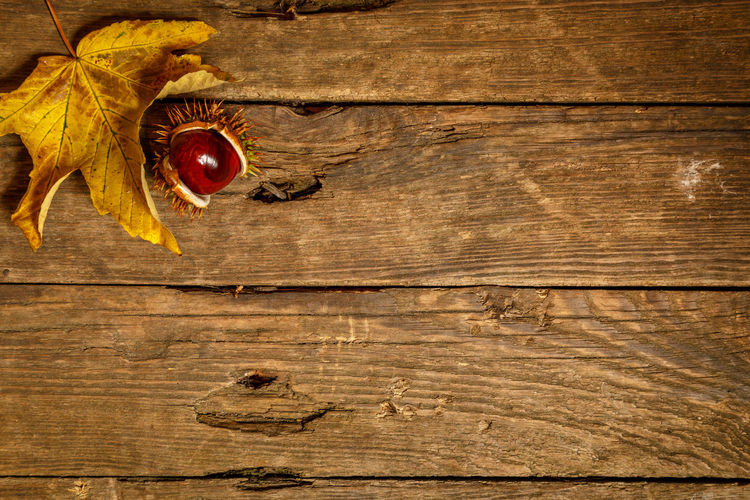 Directly above shot of fruit on table
