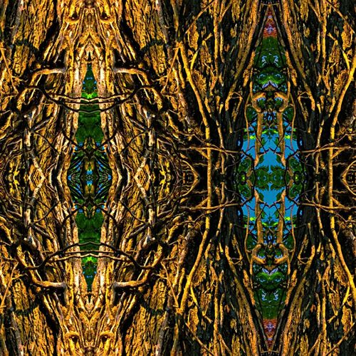 Tangled Tree Branch Tribal No People Nature Multi Colored Imagine Faces Mirror Filtered Close-up Day Futuristic Unique Creativity Outdoors Sky Beauty In Nature Do You See What I See? IPhoneography Artbyart