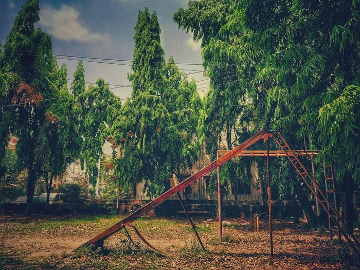The lost generation Playground Slide - Play Equipment Leaves Generationgap Old Vintage Vintagephoto Tree Sky Slide Plant Life Outdoor Play Equipment