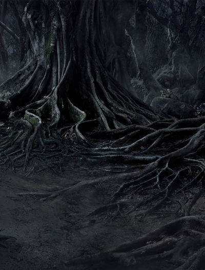 creepy trees with twisted roots and two lizard on misty night forest. Scary concept. Dark Evil Fear Halloween Horror Moon Tree Wood Abstract Backgrounds Beauty In Nature Blackandwhite Close-up Crows Dangerous Day Dead Evening Forest Mist Mood Moonlight Mystery Nature Night Nightmare No People Outdoors Pattern Roots Of Tree Scary Scenics Shadow Spooky Textured  Tree