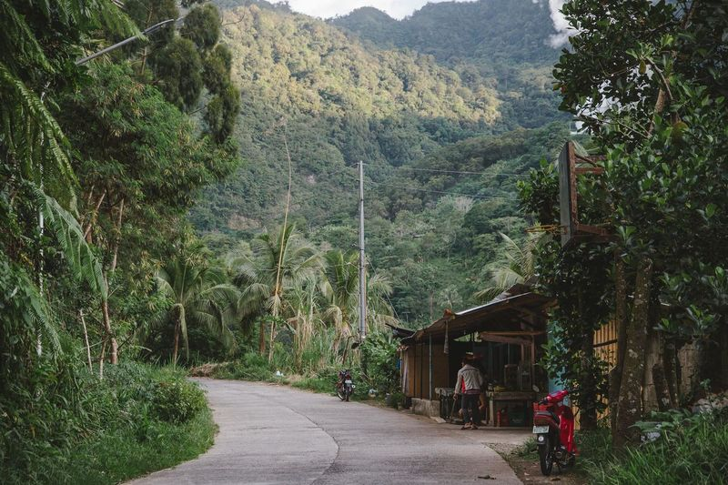 Road amidst trees and buildings against mountains