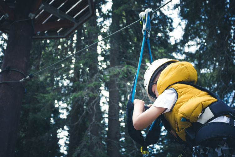 Below view of small boy on canopy tour in the forest.