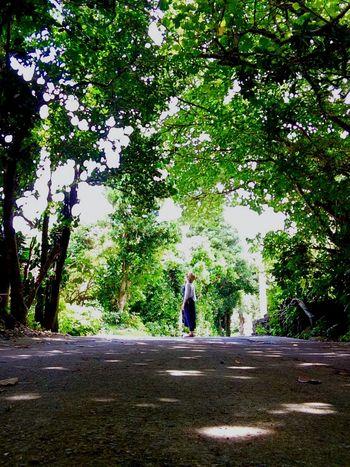 ここの緑はほんとーにいきいきしていた。 みどり好きなわたし。居心地がよかった〜 Enjoying Life Gleen