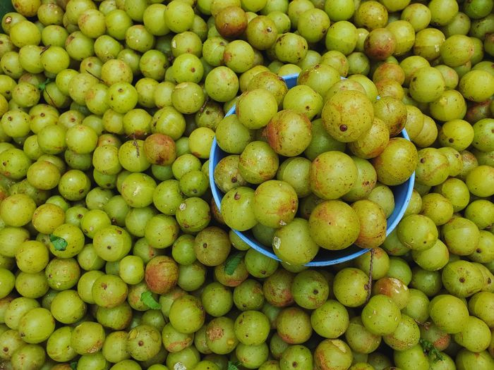 Sweet fresh indian gooseberries in a blue bowl, indian gooseberries many with leaves