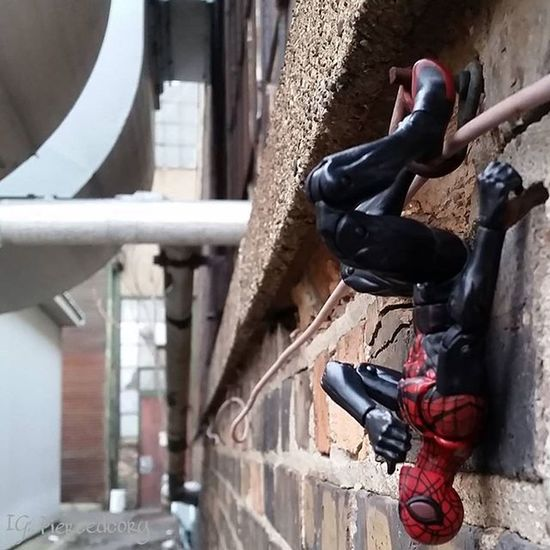 Fwebruary Day 1. Time to take a moment and plan out the month. Realworldtoys Marvellegends Spiderman Marvel