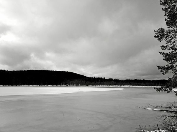 Landscape Beauty In Nature Scenics Nature Outdoors Sky Tree Winter Snow Black And White Monochrome Blackandwhite Ice Lake Miles Away Welcome To Black The Great Outdoors - 2017 EyeEm Awards Shades Of Winter