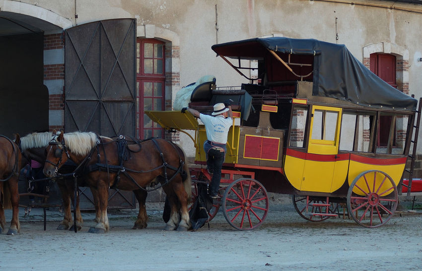 Casual Clothing Chevaux Château Horse Horse Cart Mode Of Transport Outdoors Puisaye Saint-fargeau Spectacle Yonne