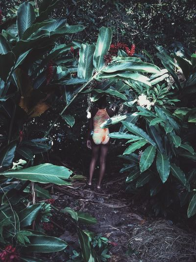 Foliage, Vegetation, Plants, Green, Leaves, Leafage, Undergrowth, Underbrush, Plant Life, Flora Green Color Hiding Nature Person Plant Swimsuit Swimsuit Fashion Swimsuit Model First Eyeem Photo