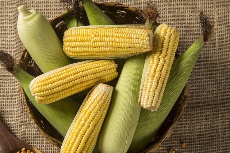 Corn maize and