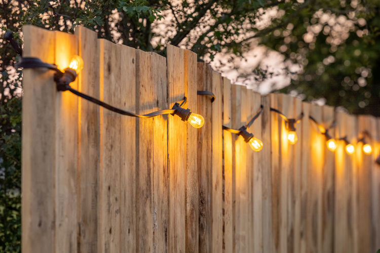 Close-up of illuminated plant by fence