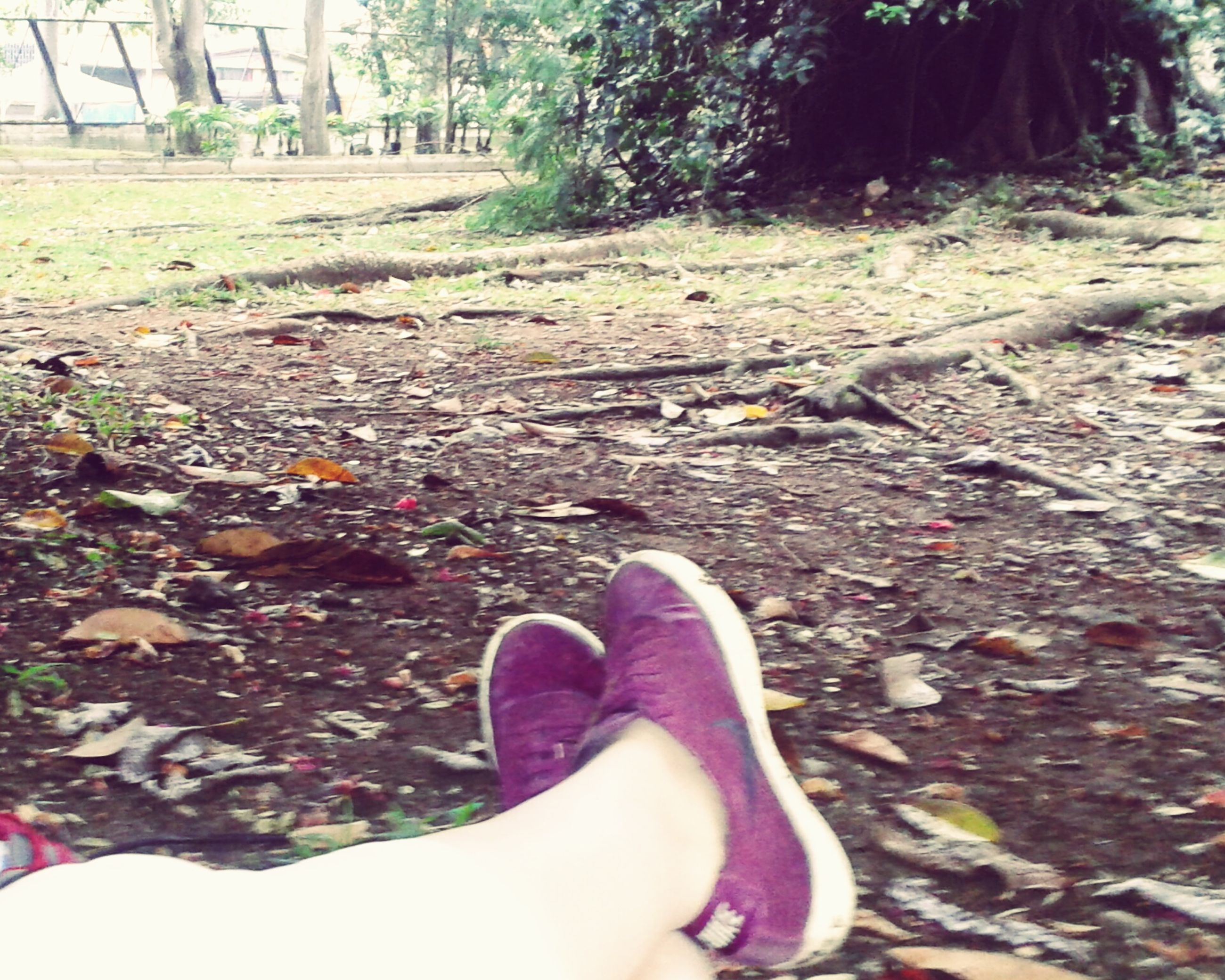 low section, person, personal perspective, shoe, lifestyles, leisure activity, human foot, grass, high angle view, relaxation, field, footwear, standing, unrecognizable person, barefoot, day