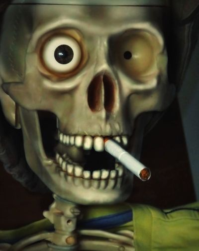 Don' t smoke.. Spooky Human Skull Looking At Camera Fun Funny Picture Funny Pics! Focus On Foreground Close-up