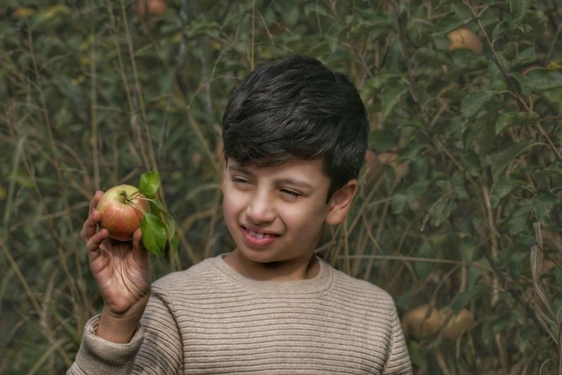 One Boy Only Smiling Close-up Holding Apple Apple Apple Field
