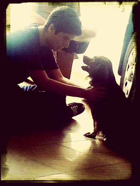 Collected Community you are my little brother! I Love My Dog