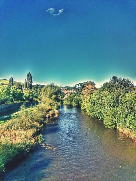 Tree Water Blue River Sky Riverbank Beauty In Nature Outdoors River Severn Riversevern Newtown River Severn Autum Skys Small Cloud Blue Sky Muddy River Wales❤ No People