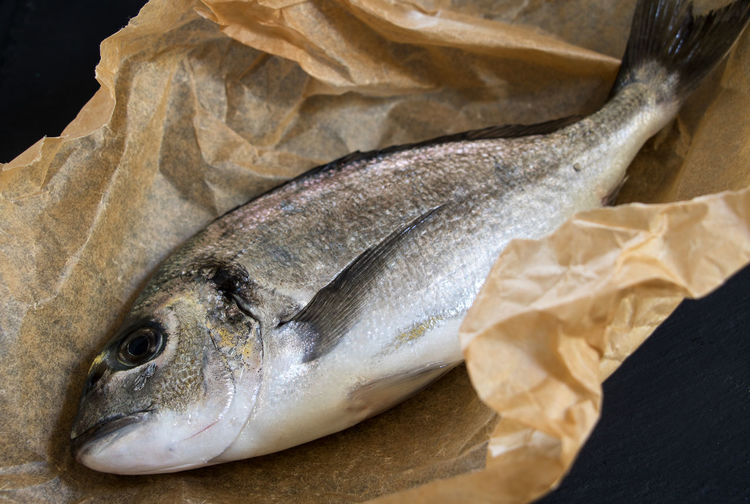 a fresh dorade in the paper ready for grilling Dorade Mediterranean Sea Animal Barbecue Grill Close-up Fish Fish Markt Focus On Foreground Food Freshness Gourmet Food Healthy Eating High Angle View Indoors  No People Paper Raw Food Roast Salt Water Fish Seafood Silver Colored Still Life Studio Shot Vertebrate Wellbeing