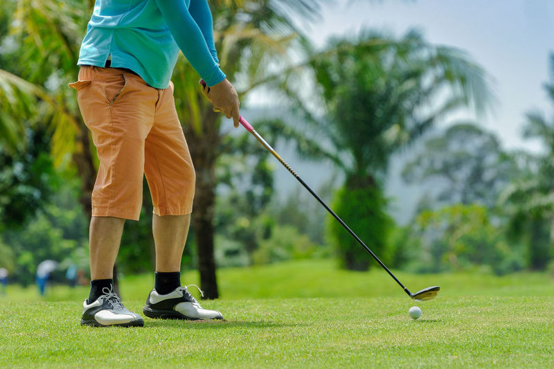 Golfers tee. Day Focus On Foreground Golf Golf Ball Golf Club Golf Course Golf Swing Golfer Green - Golf Course Leisure Activity Lifestyles Low Section Men One Man Only One Person Outdoors Playing Real People Skill  Sport Sportsman Standing Taking A Shot - Sport Tree Weekend Activities