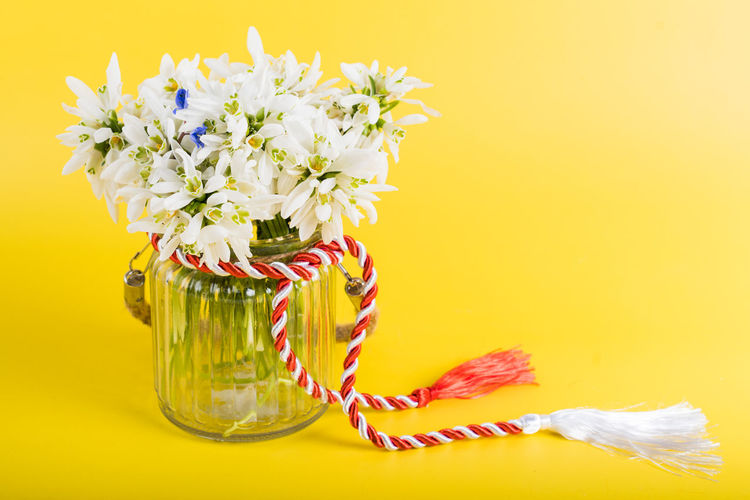 Close-up of yellow flowers in vase