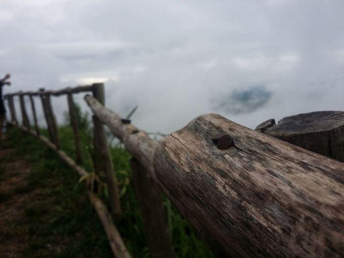 Fog Wooden Post