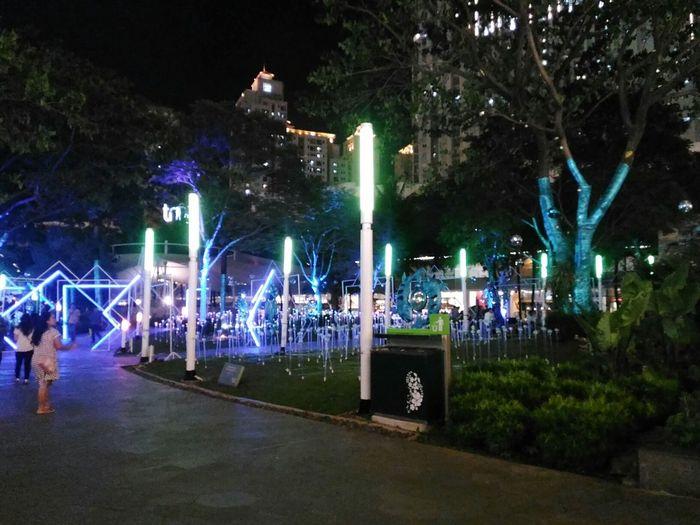 Adapted To The City, Urban Nature Night Life. EyeEmNewHere Alonelyphotowalk