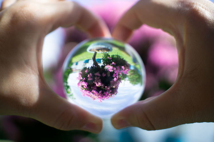 Cropped hands holding crystal ball against blooming flowers