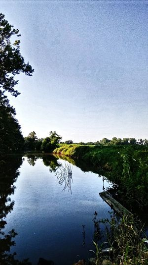 Reflection Water Lake Nature Tree Sky Beauty In Nature Outdoors No People Scenics Day
