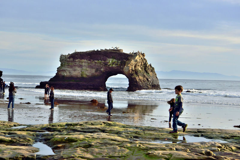 Natural Bridges State Beach 10 Santa Cruz, Ca. Wave-carved Sea Arch Beach 65 Acre Park Only The Middle Of 3 Original Arches Remains Innermost Arch Collapsed During 1980 Storm Outermost Arch Fell During Early 20th Century Nature Beauty In Nature Nature_collection People On The Beach Sand Water Tideline Natural Bridges State Beach Reflected Glory Reflections ☀ Close-up Seabirds On Sea Arch Landscape_Collection Landscape_photography Coastline Pacific Ocean Horizon Over Water