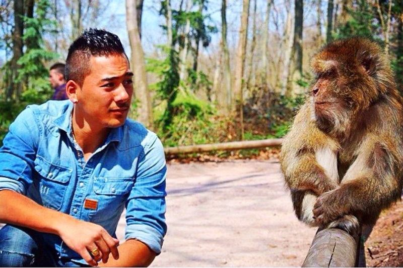 In what seems the man descended from monkeys. RePicture Friendship