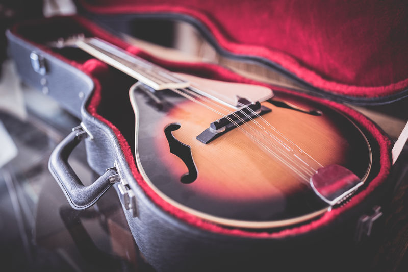 Guitar Musical Instrument String Musical Instrument Electric Guitar Music Arts Culture And Entertainment Violin Fretboard Classical Music Close-up Musical Equipment String Instrument Classical Musician