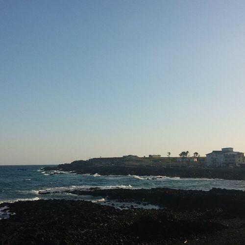 아침 바다 숙소 화이트하우스 산책 해안도로 풍경